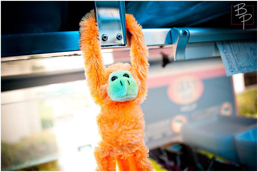 Tabe rally monkey