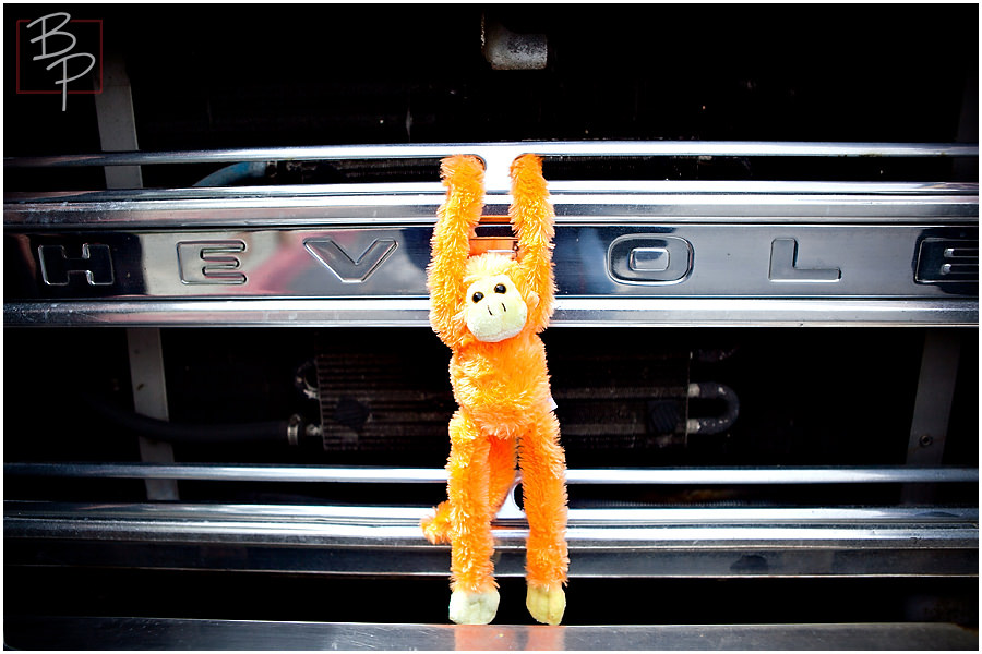 Food truck rally monkey