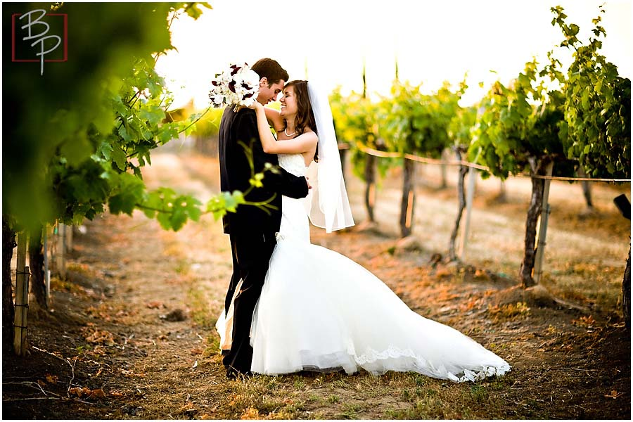 Jenna And Brandon Temecula Wedding Photographs South Coast Winery California Bauman Photographers