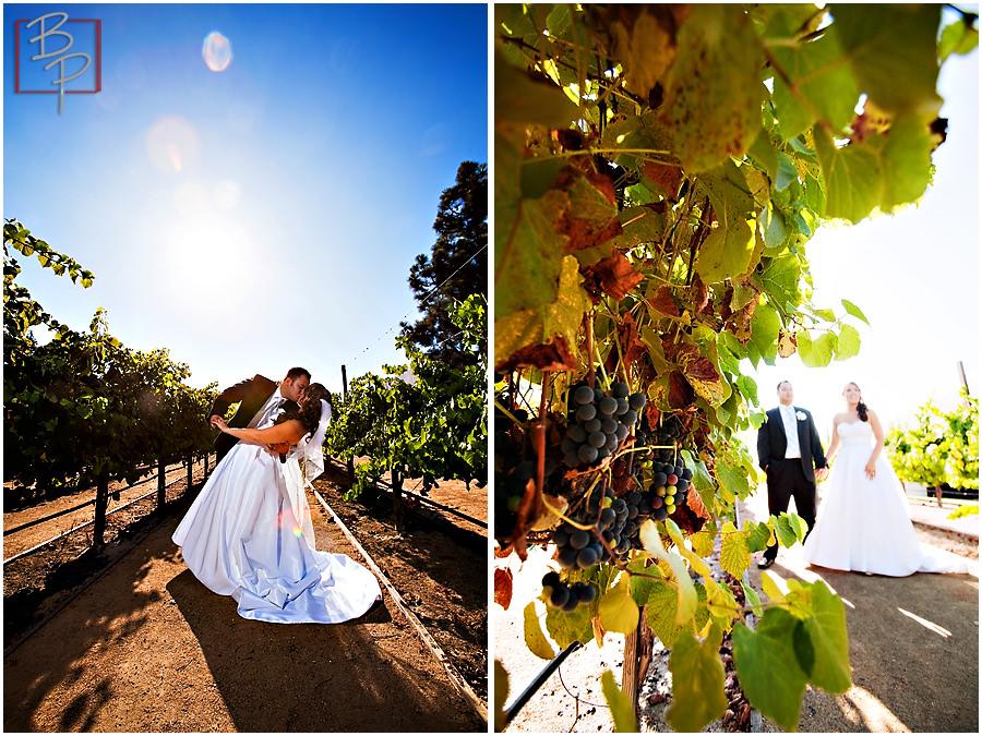 San Diego Wedding Vineyard Photos