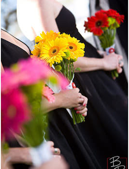 Bouquets and Socks: Fun with Color